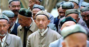 باحث من كلية الآداب يجري دراسة عن تمثيل أقلية الإيغور في الصحافة الصينية